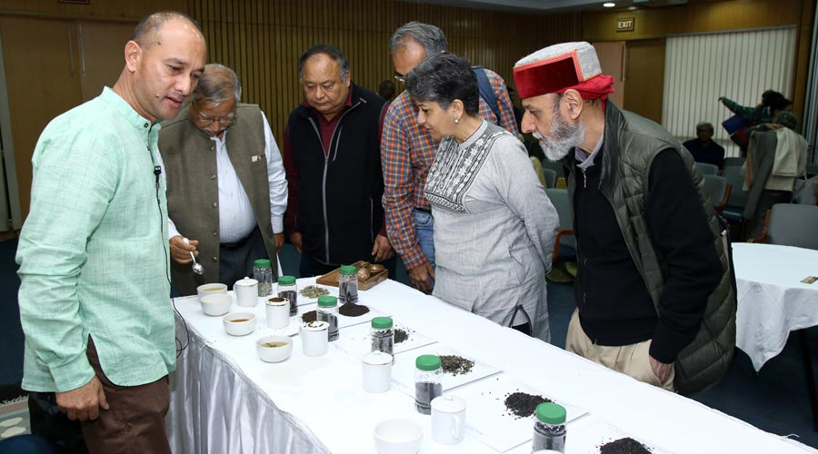 A break for tasting the varieties of tea from the North East